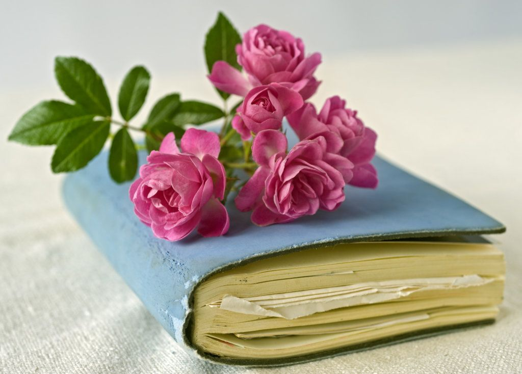 books, book, diary, diaries, travel books, guest, guests, guest bedroom ideas, guest bedroom, gifts for your guests, staging, home staging, home stager, design, interior design, interior designer, total home, total home design, total home experience, yourtotalhome. home, home is where the heart it.